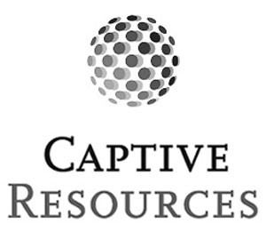 CEO Captive Resources offers a testimonial of working with Mark Scharenbroich